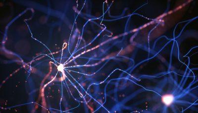 Biomedical engineering atoms