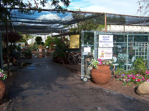 The Quaint And Long Elished Harper S Nursery Has A Retion For Being Best Of When It Comes To Offering Landscaping Services Advice