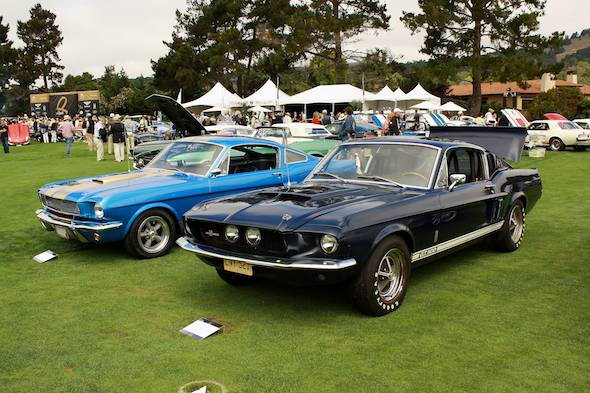 Shelby Mustangs at-Quail