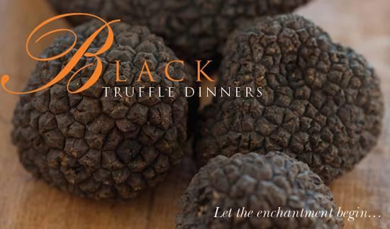 Patina Black Truffles