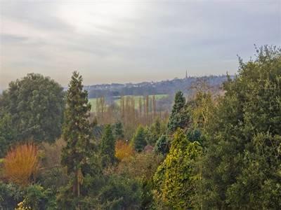 Heath-View