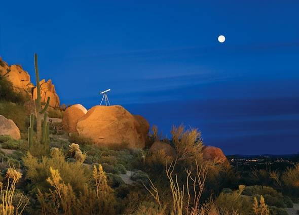 Talavera-Starry-Skies-Celestial-Picnics