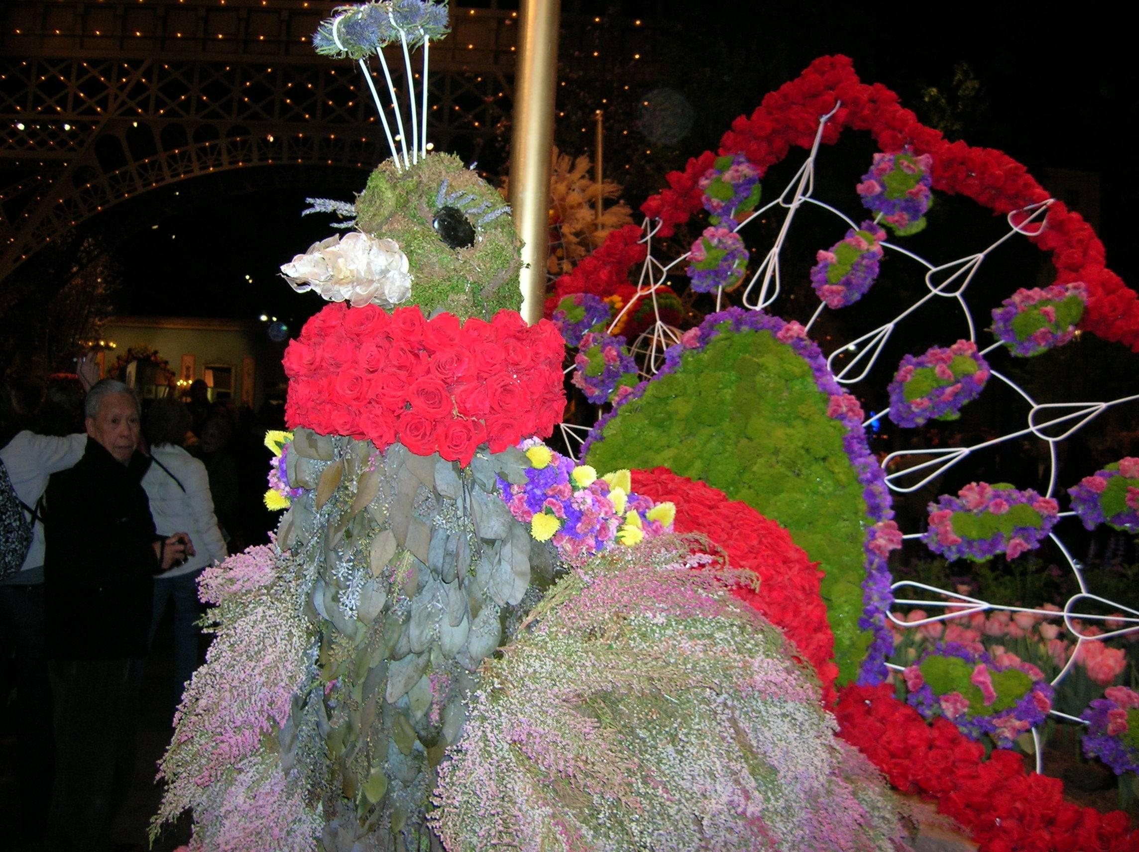 flower show 2011 002