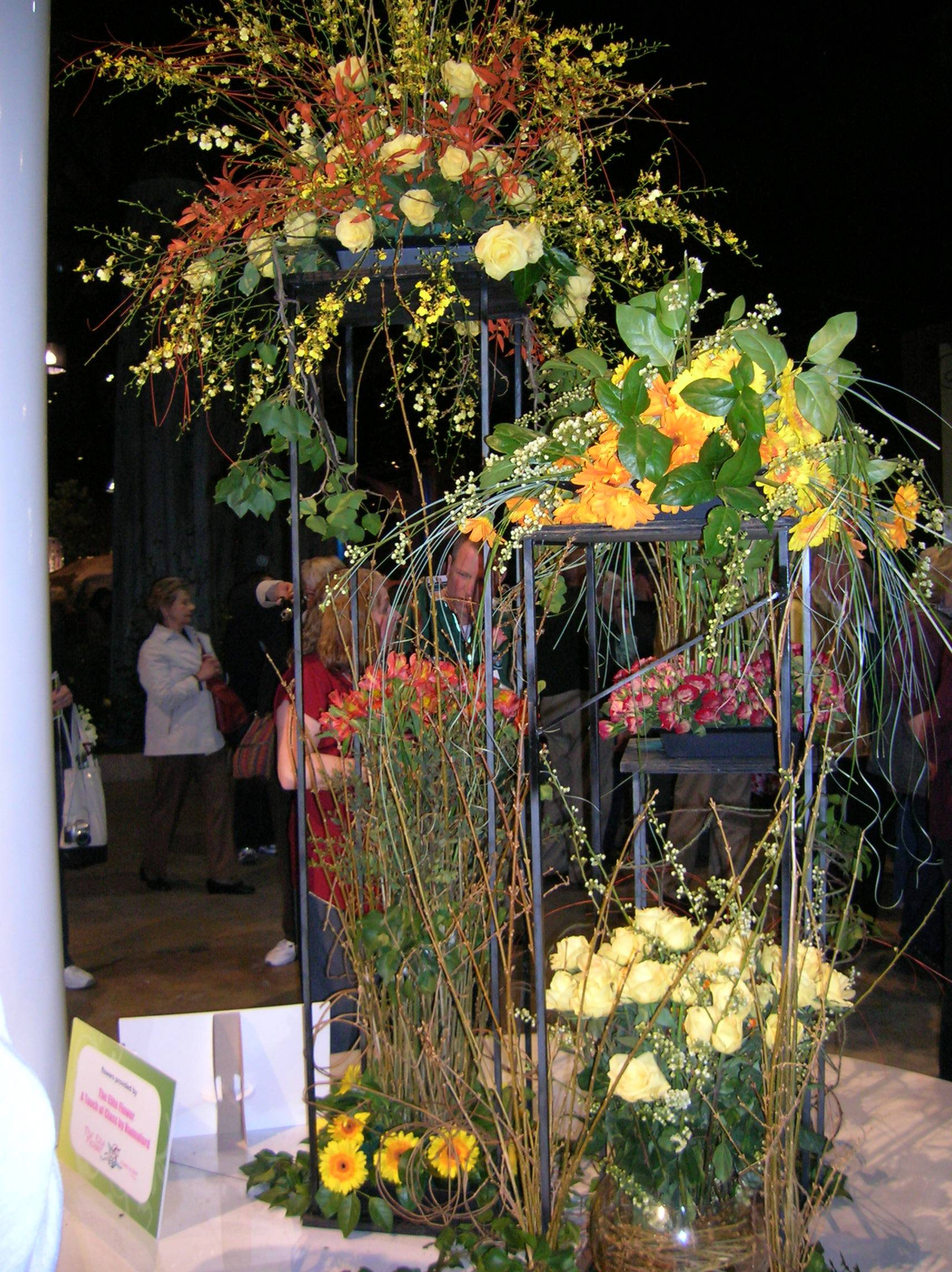flower show 2011 011