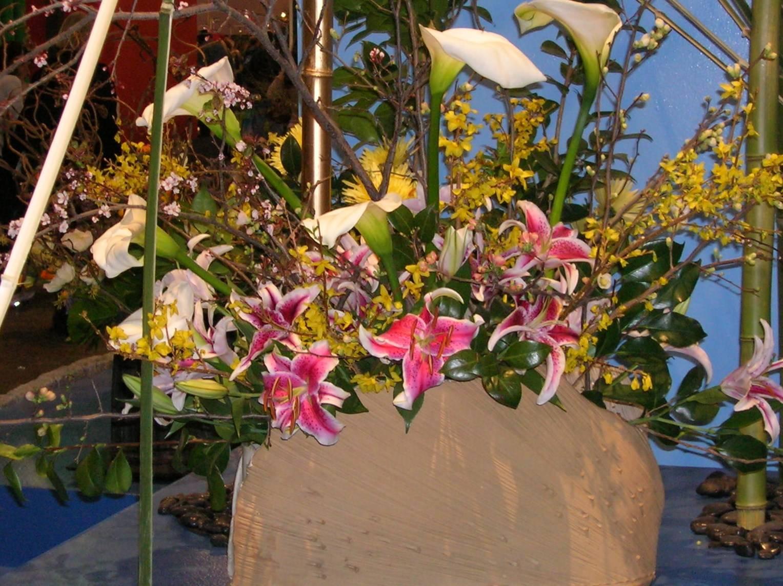 flower show 2011 055