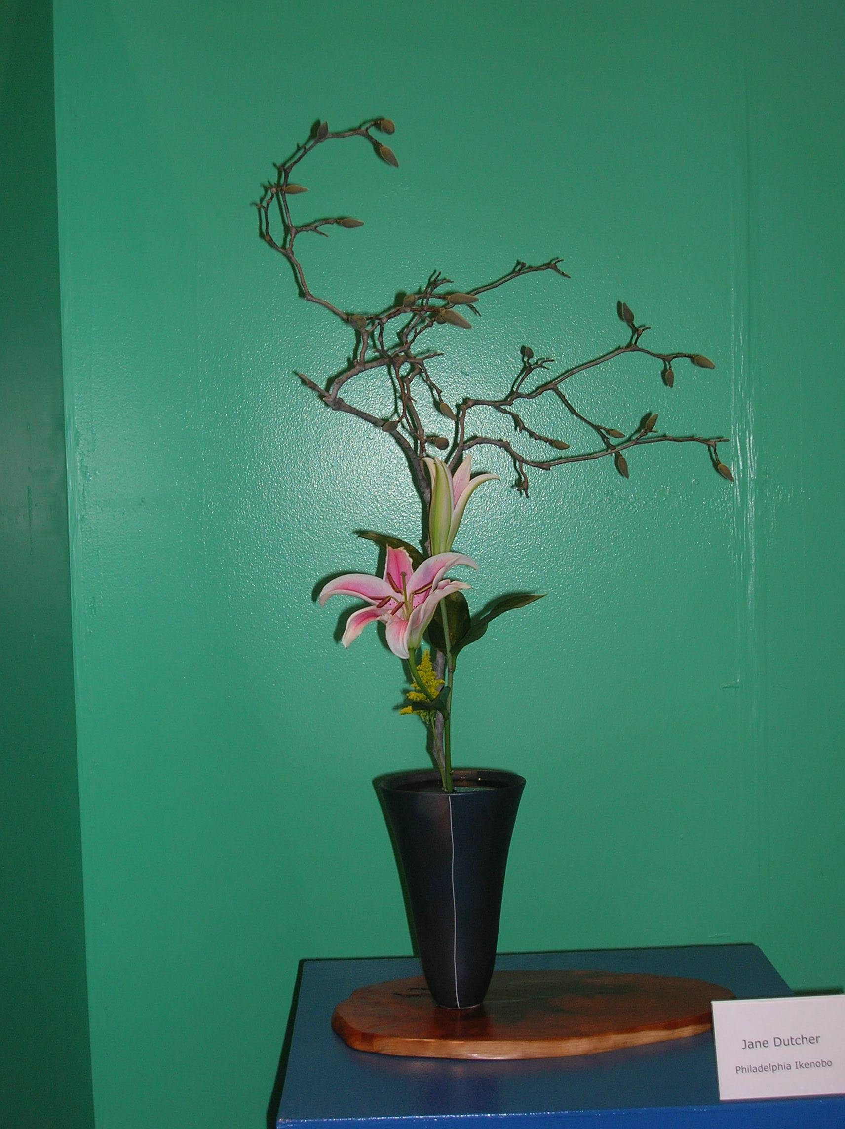 flower show 2011 056