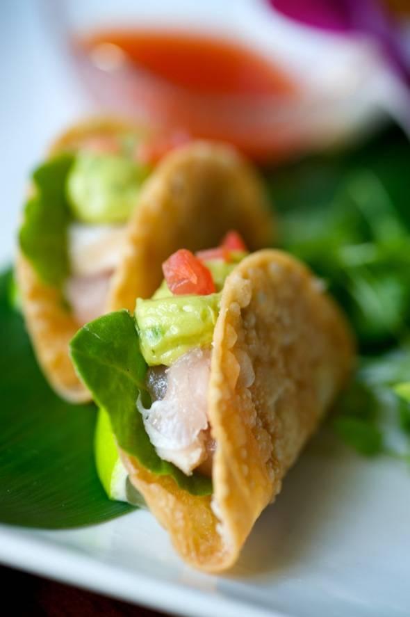 Sushi Roku Albacore Tacos