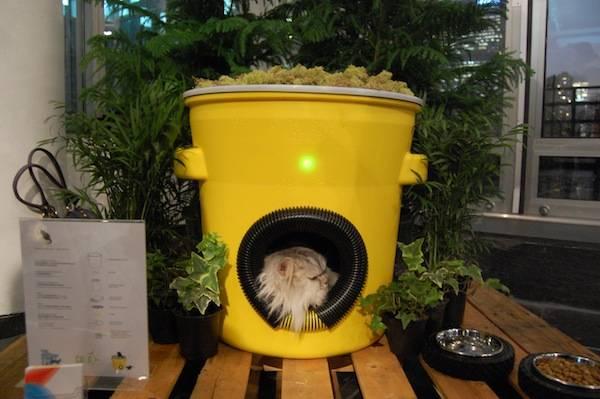 Homes-for-NYCs-Stray-Cats-1
