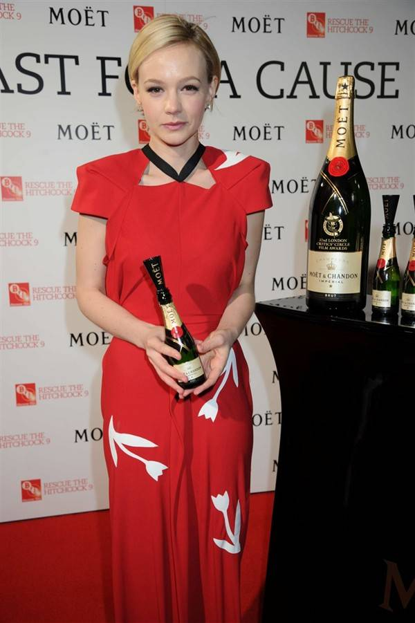 toast-for-a-cause-moet-chandon-meets-stars-of-the-screen_3