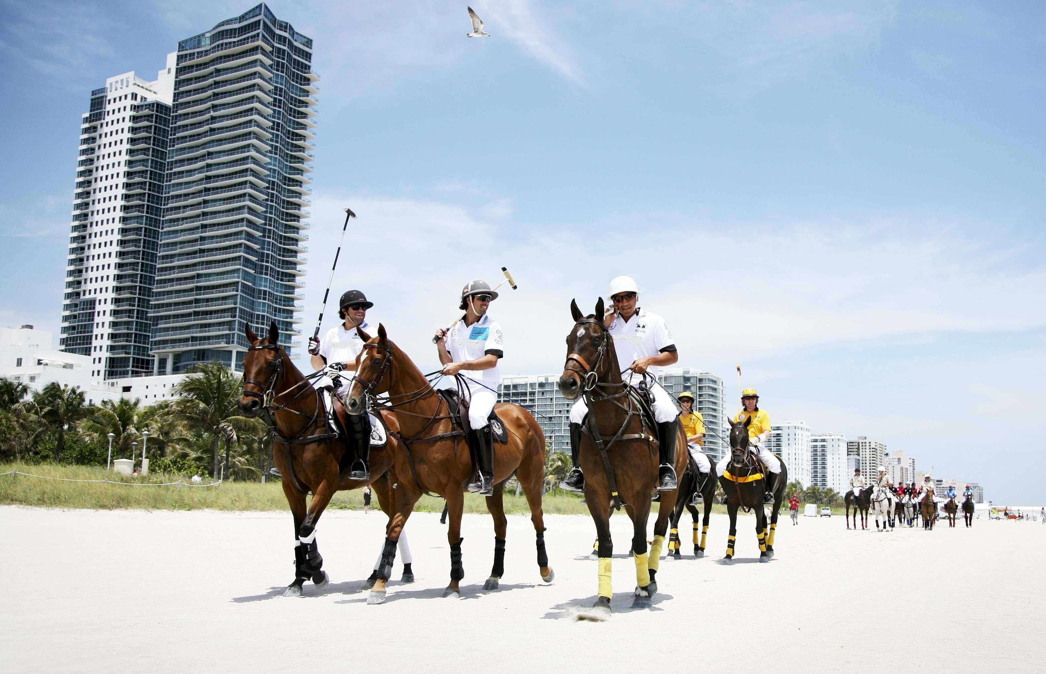 Marching Polo Ponies