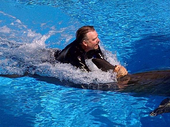 Bill Engvall Swimming with dolphin at Siegfried & Roy's Secret Garden and Dolphin Habitat 6.23.12