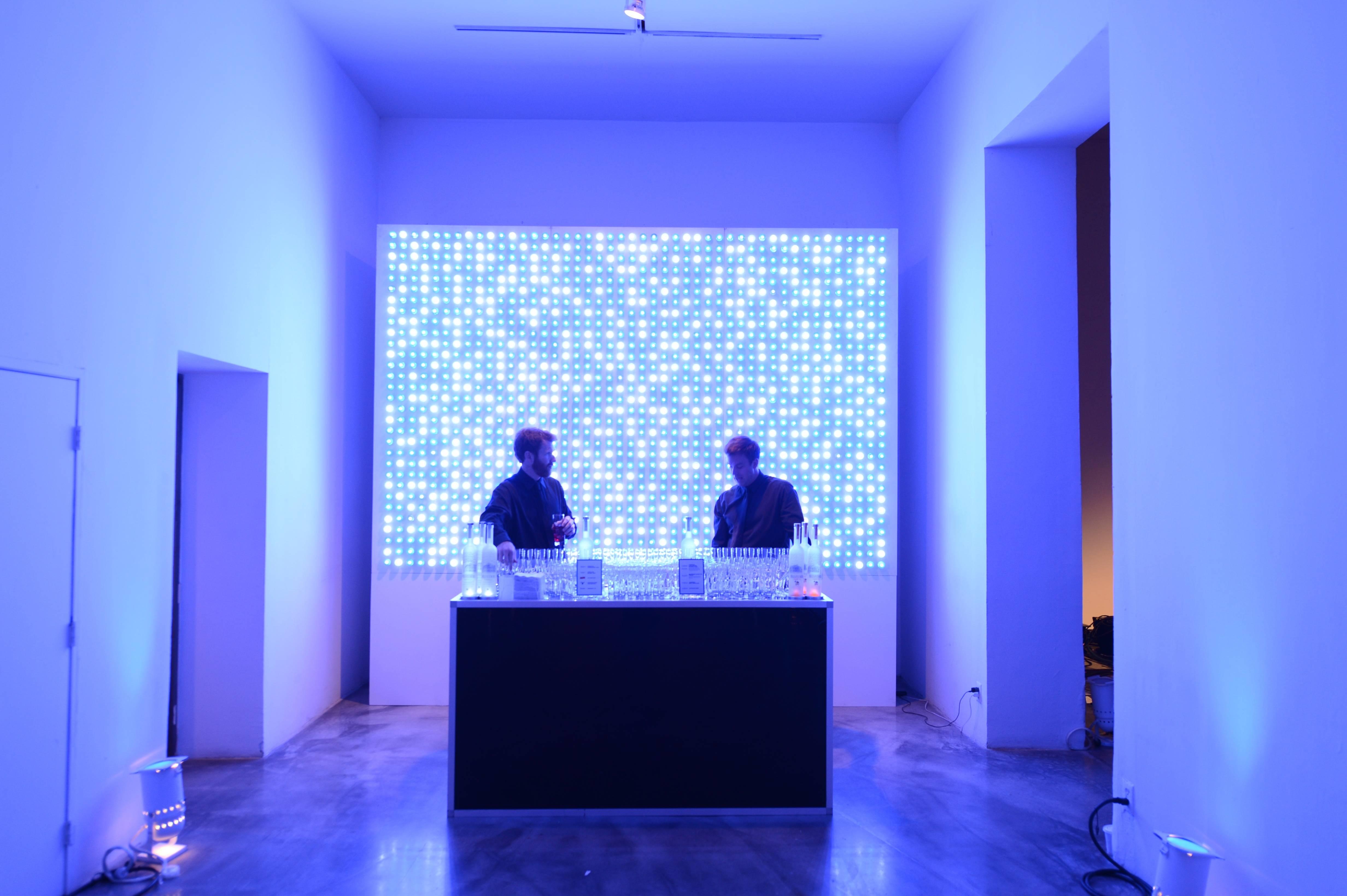 Whitney Art Party _ Belve Bar 3