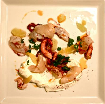 vagrancy-project_yogurt-and-ceviche-course
