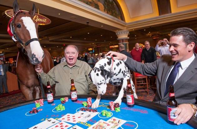 South Point_Clydesdale Blackjack 2