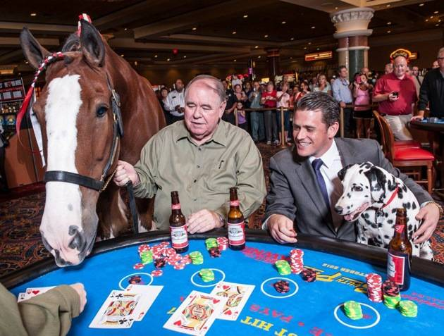 South Point_Clydesdale Blackjack 3