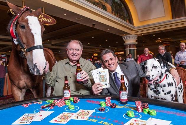 South Point_Clydesdale Blackjack 5