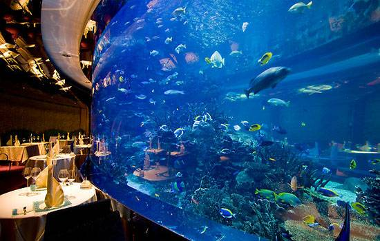 Award Wining Seafood Restaurant Al Mahara Is Located Within The Extravagant Setting Of Burj Arab Boasts Inclusion An Aquarium