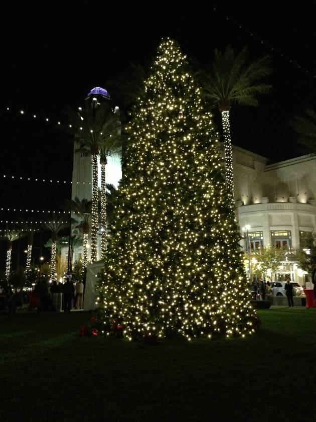 Christmas Tree in Symphony Park