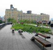 high line-featured