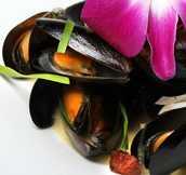 wok fried mussels.172