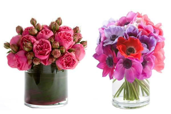 h-bloom-florist-01
