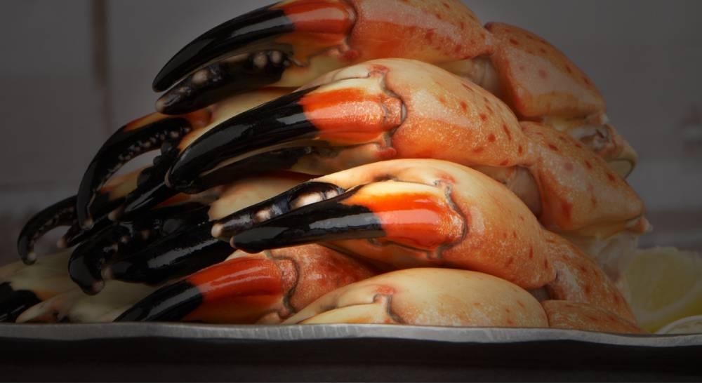Top 5 Seafood Restaurants In Chicago Haute Living
