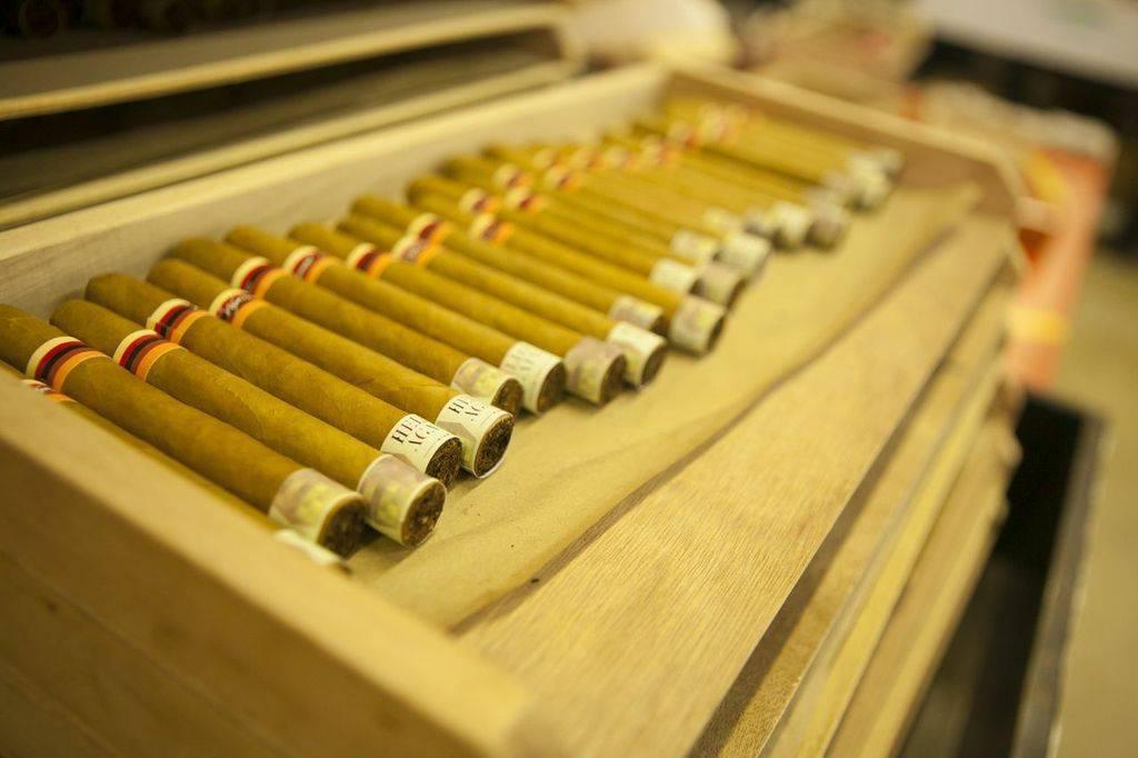 Wynwood Cigars