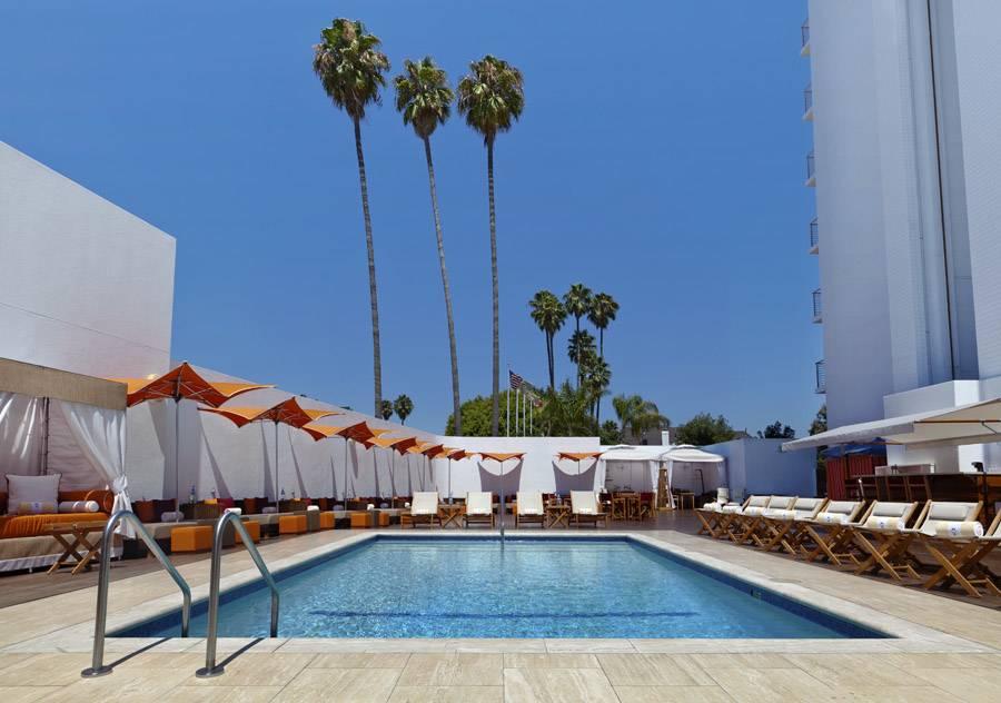 Mr C Beverly Hills Pool Ground View