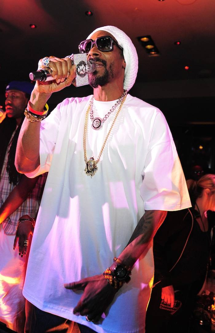 Snoop Lion performs At 1 OAK Nightclub At The Mirage