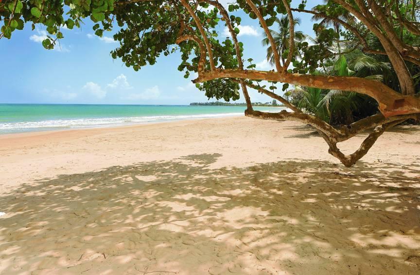 Bahia_Beach