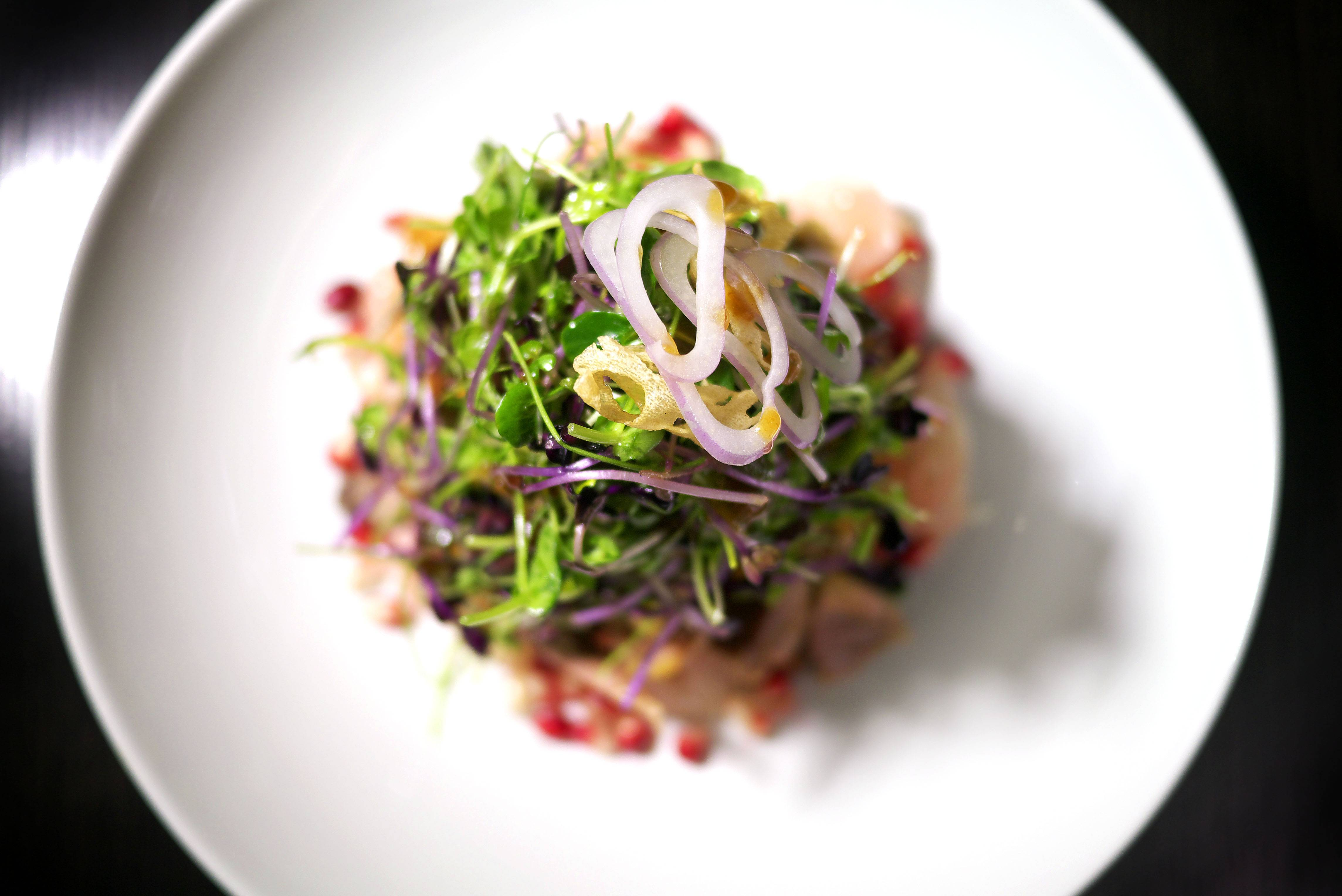 Duck Salad 2