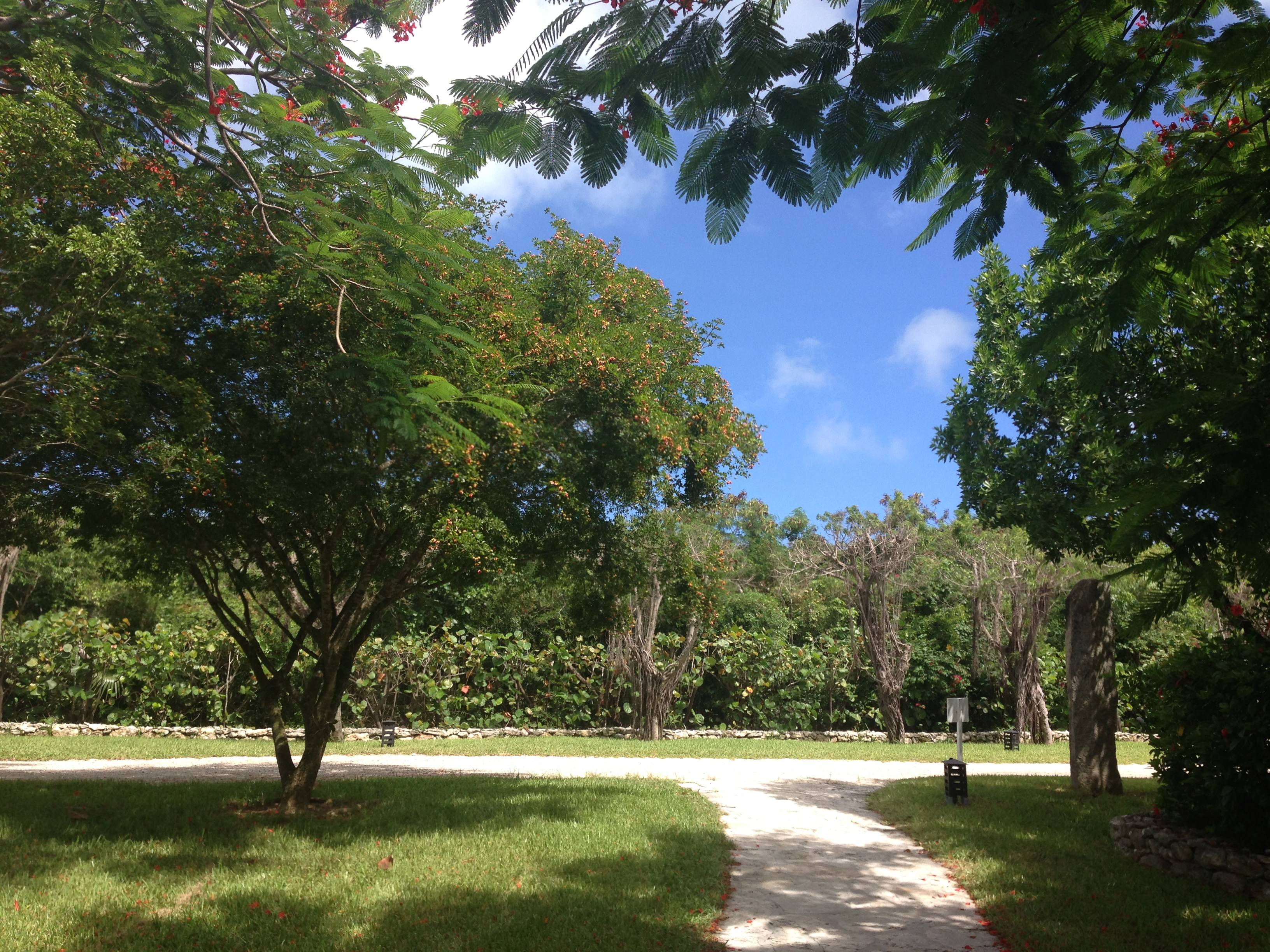 Property at Parrot Cay