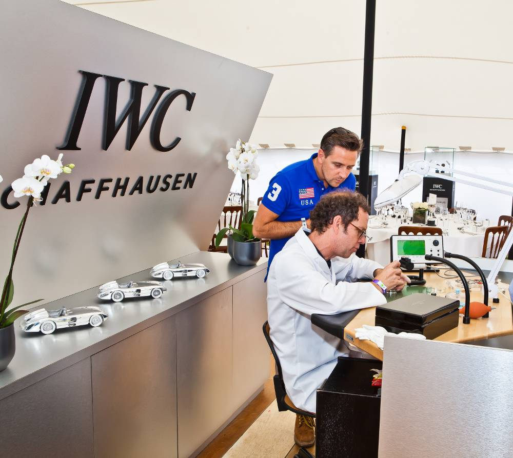 IWC-at-CarFest-South_2013_05