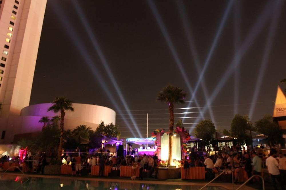 Palms Pool at Midsummer