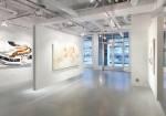 Quintenz Gallery