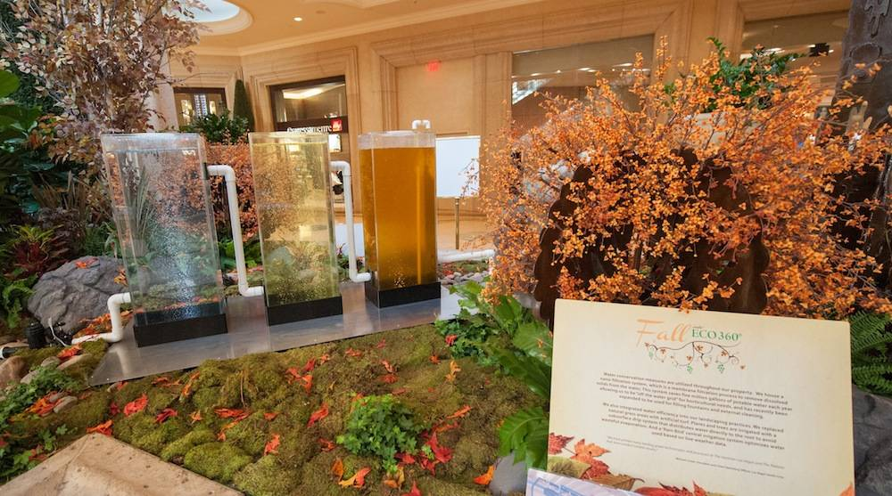 The Palazzo Waterfall Atrium Fall Display 5