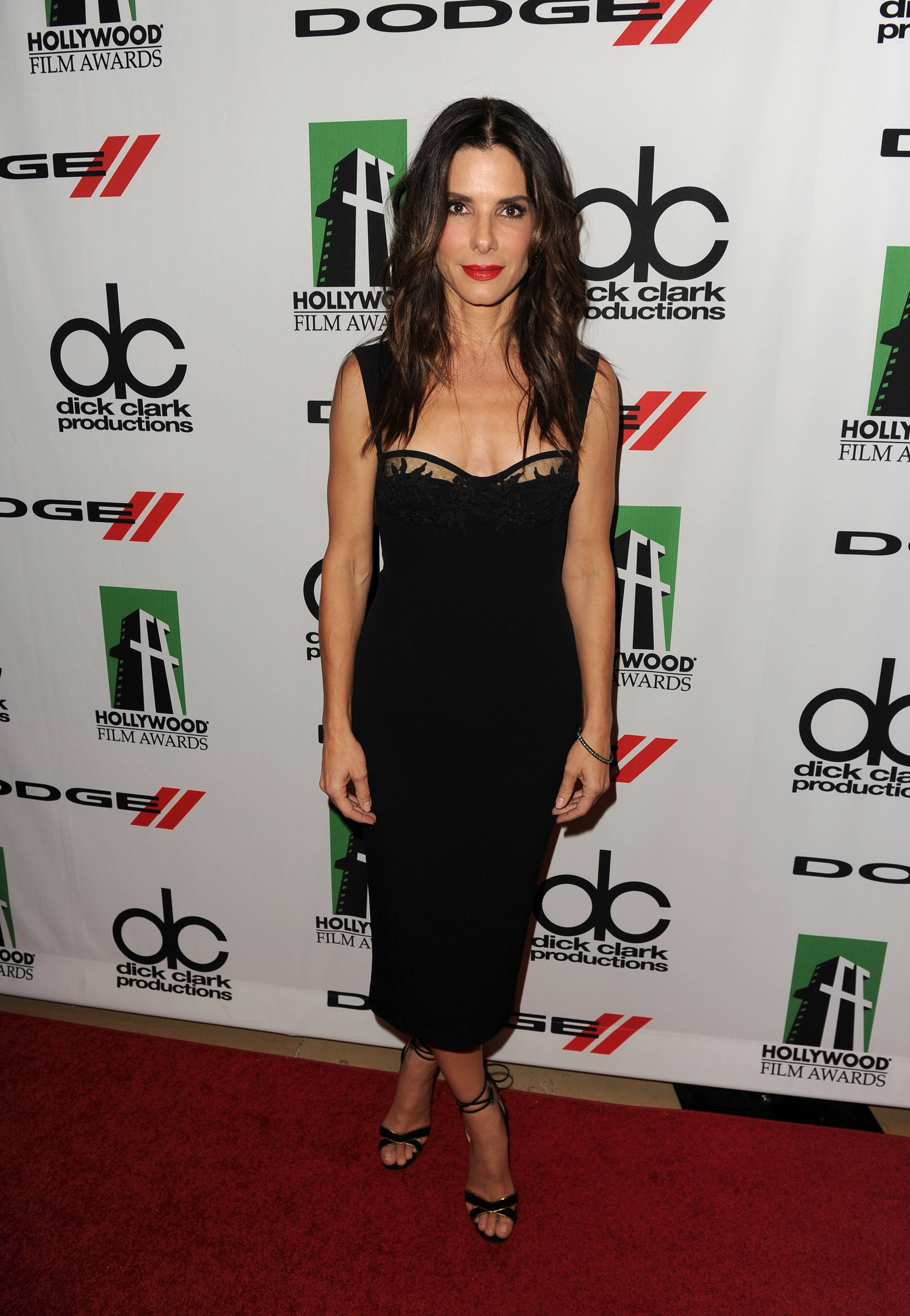 17th Annual Hollywood Film Awards – Red Carpet