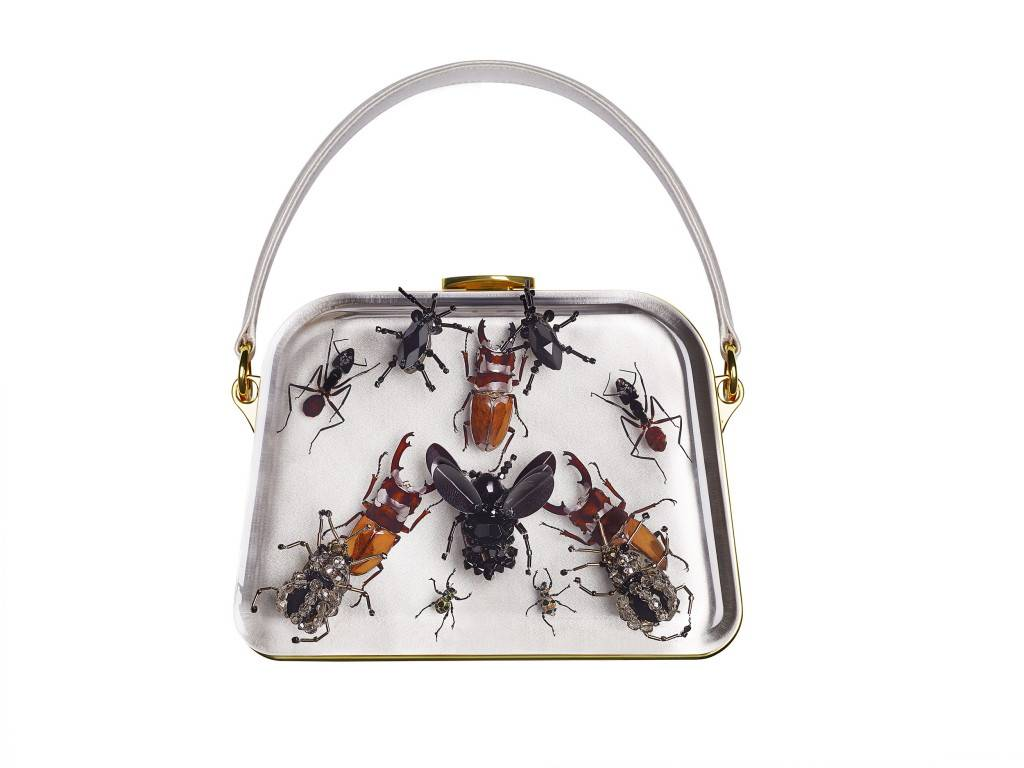 Entomology bag_2