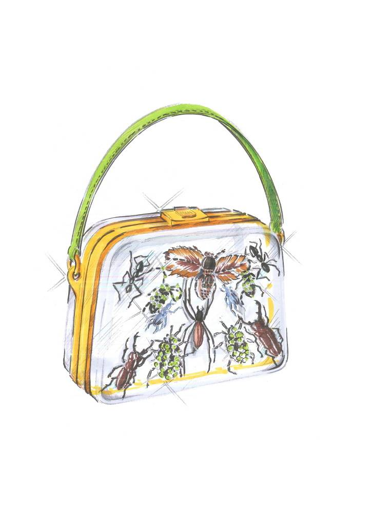 Entomology bag_sketch