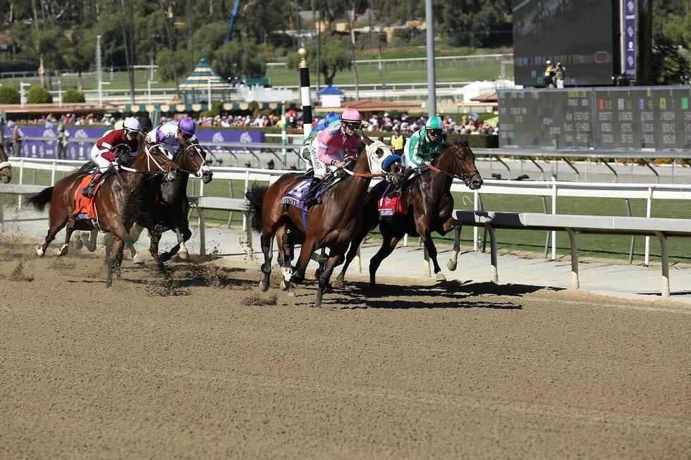 Horses_BreedersCupWorldCampionships_PhotCreditInvision
