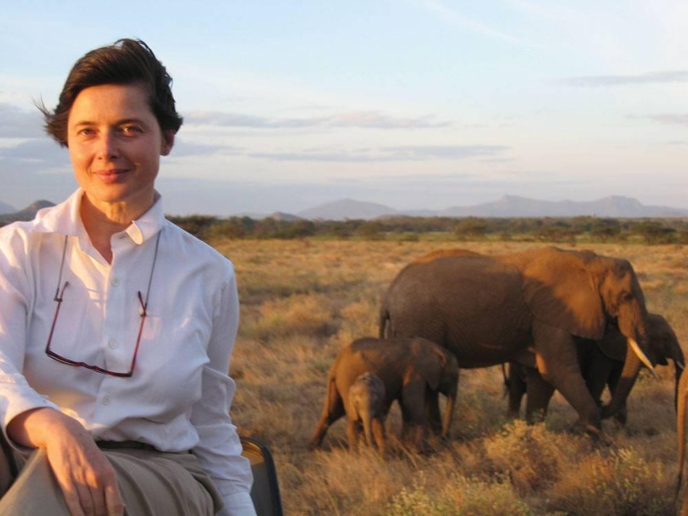 Isabella-Rossellini-elephants