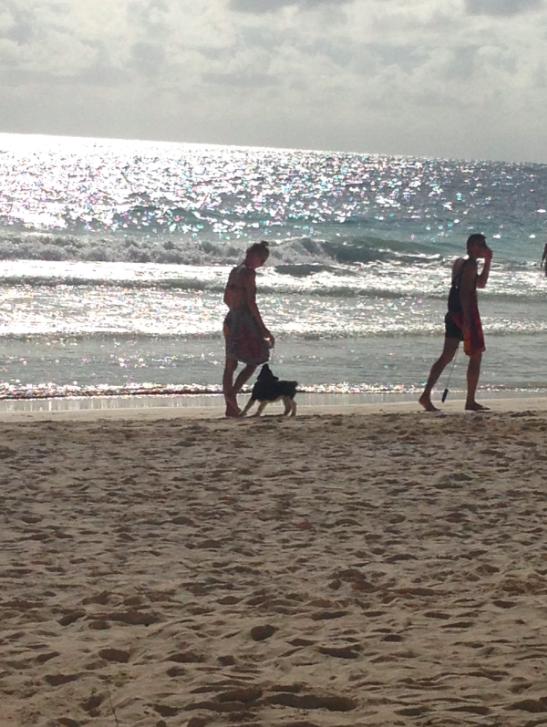 Screen Shot 2013-12-30 at 11.29.50 AM