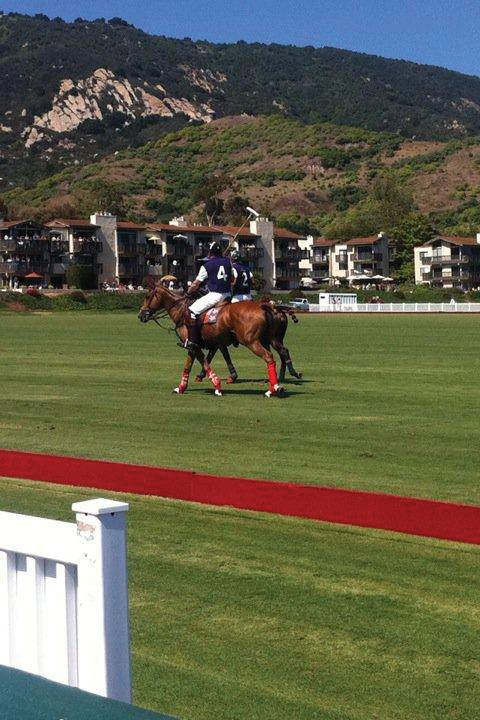 polo-royal-match