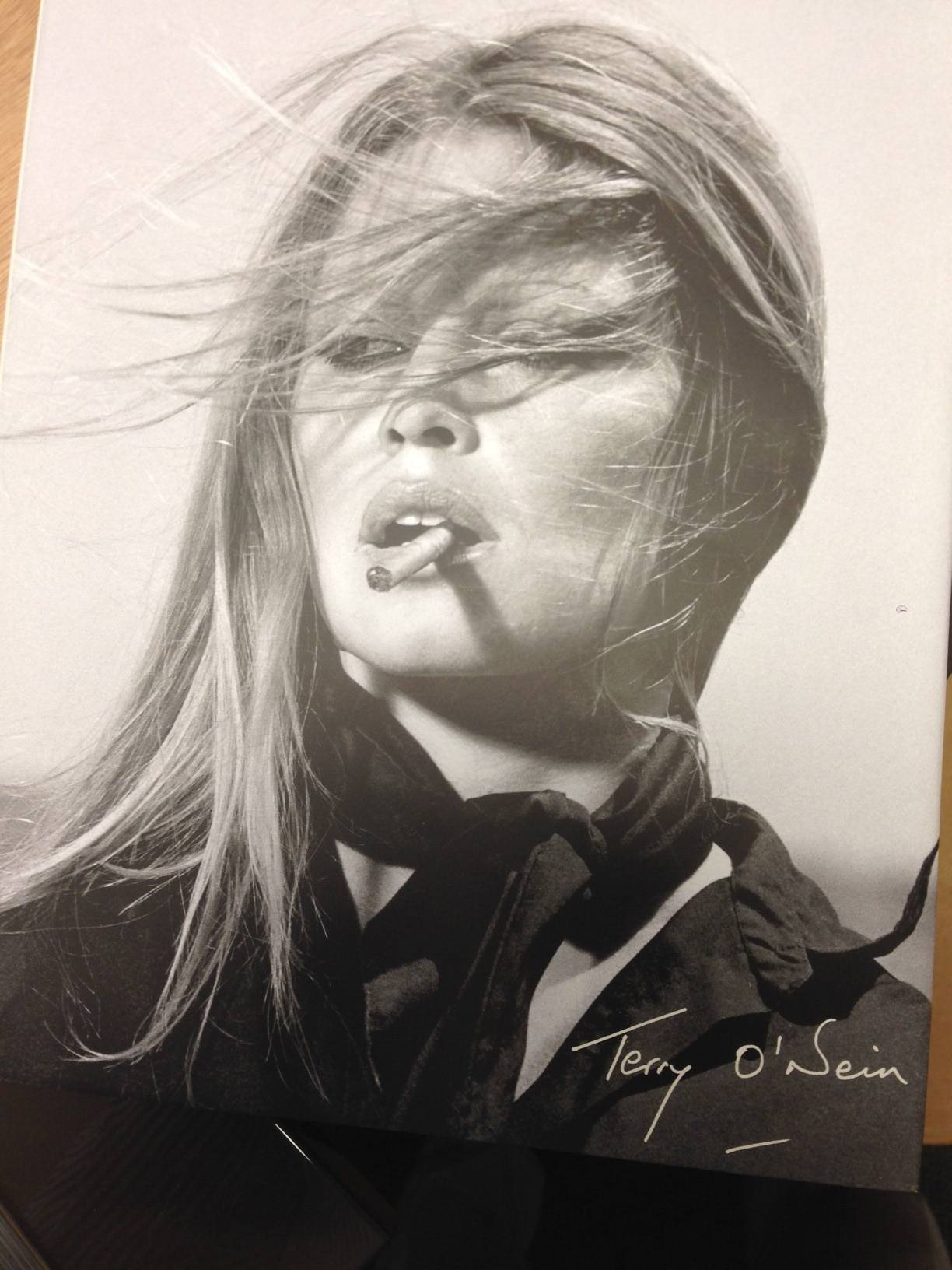 Terry O'Neill Book