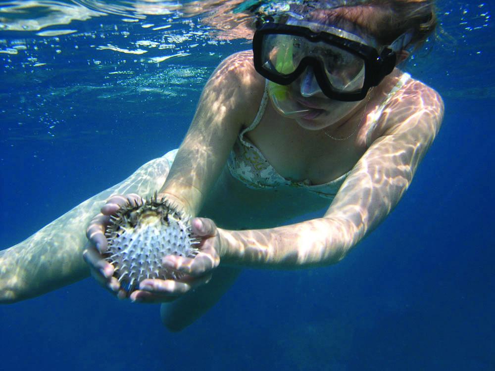 snorkeling-page 2