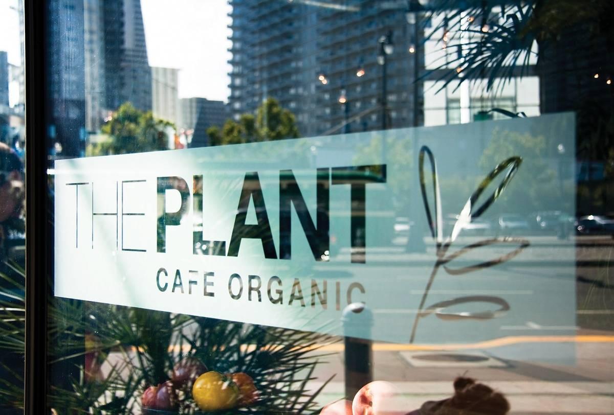 Plant Café Organic