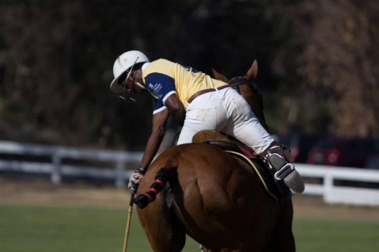 Polo play