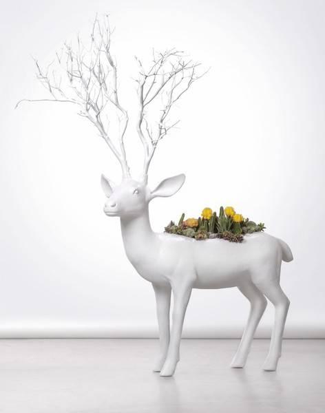 Plant_The_Future_Deer_David_Lloyd_Neox_Image_Photography_Studio_Portrait_Photographer_Miami_Michelle_Citrin_Lloyd