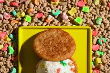 Snickerdoodle cookie-Whiskey Charms ice cream sandwich2