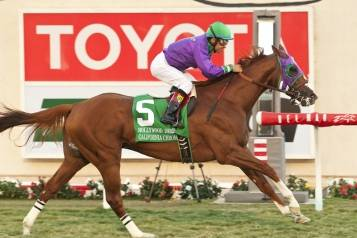 California Chrome a1 72